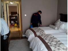 石家庄酒店灭鼠