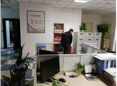 办公楼怎么灭老鼠